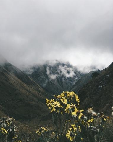 Inca Trail, Peru.